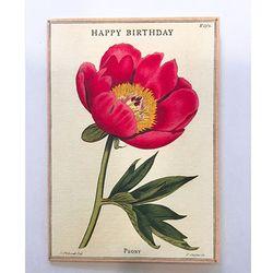 카드-Happy birthday peony