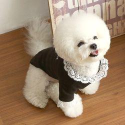 강아지 자수 레이스 니들포인트 티셔츠 c1