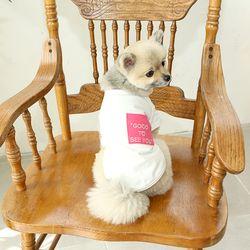 강아지 자수 배색 주머니 니들포인트 티셔츠 c1