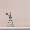 해외 Nude Vase (H230) + Glass Vase