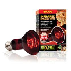 파충류 적외선 램프 50W(PT2141)