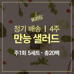 [무료배송] 4주 식단 - 만능샐러드 5팩x4주(총20팩)