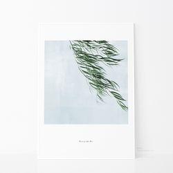 가드닝2-빌로우-50x70