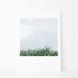 가드닝2-스프레드-50x70