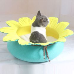 연꽃하우스
