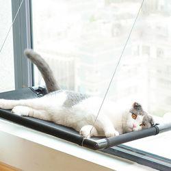 꿀잠 고양이 창문해먹