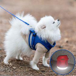 강아지 하네스 가슴줄 리드줄 블루