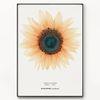 메탈 꽃 식물 그림 인테리어 액자 보석 해바라기 [대형]