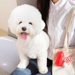 강아지 배변 봉투/케이스 세트 레드