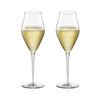 Bormioli Inalto ARTE Champagne(샴페인잔) 320ml 2P