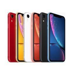 [Apple] 통신사3사호환 공기계 애플 아이폰 iPhone Xr 256GB