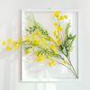 투명 식물 인테리어 액자-벨플라워 40x50cm (금전운액자)