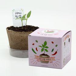 팜팜농장 - 고추 모종키우기