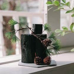 절경을 담다 소나무 숯화분-공기정화 미세먼지제거 습도조절