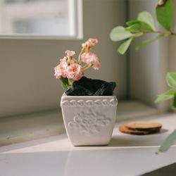 장미가지를 담은 숯화분-공기정화 미세먼지제거 습도조절