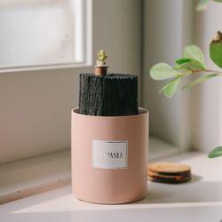 우리집 공기지킴이 핑크 숯화분-공기정화 미세먼지제거 습도조절