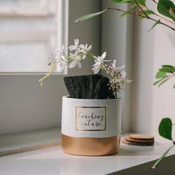 동양란꽃 핀 숯화분-공기정화 미세먼지제거 습도조절