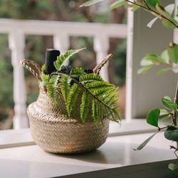 나만의 산림욕 숯 바구니(소)-공기정화 미세먼지제거 습도조절