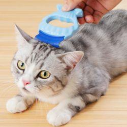 고양이 강아지 반려동물 조개 브러쉬 털정리 애견용품