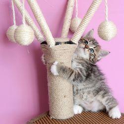 고양이 원통 미니 캣타워