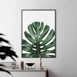 몬스리프 식물 액자 인테리어 A3 포스터