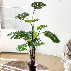 조화 그리너리 몬스테라 나무 화분