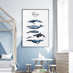 고래 아이방 그림 액자 인테리어 A3 포스터