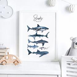 상어 아이방 액자 인테리어 그림 A3 포스터