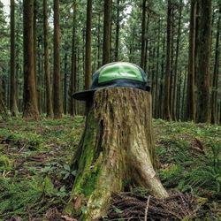 숲 캠프캡