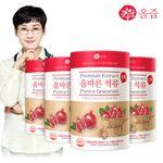 올즙 올바른 석류스틱 4통(총200포)