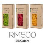 스칸디아모스 500g DIY용 천연이끼 공기정화식물 액자/화분