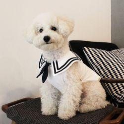 [DOG] 몽페레 마린 코디티셔츠 (Marine White)