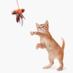 뽀시래기 고양이 장난감 마약 낚시대 (고양이용품)