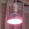 LED식물전구 식물생장용전구 광합성전구 GROW LAMP