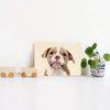 가로형 탁상용 강아지 자작나무 우드액자 28종 152x101mm