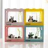 동물친구들과 함께하는 국산 마리모 키우기 DIY세트 마리모(중)