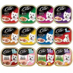 강아지 습식사료 (24개1박스)시저 캔 100g