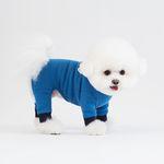 페블자수 립 올인원 (블루)