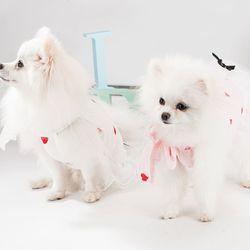 봉봉펫닷컴 강아지 러블리 레이스 하트 드레스