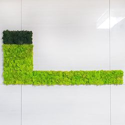 편백 스칸디아모스 포인트벽지 - 손쉬운 블럭형 DIY (중) X 3개