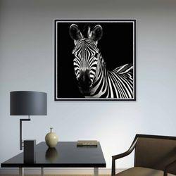 흑백 얼룩말 동물 사진 인테리어 그림액자