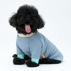 Cheez Blue Pullover 소형견 - S M Size