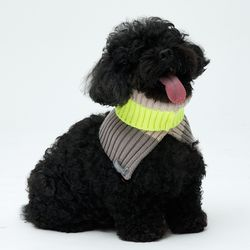Yellow Cheez Neck Warmer 소형견 - S Size
