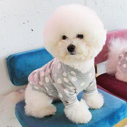 [DOG] 몽페레 플러피 도트맨투맨 (Cloudy Gray)