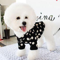 [DOG] 몽페레 플러피 도트맨투맨 (Snug Black)