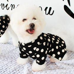 [DOG] 몽페레 플러피 도트원피스 (Snug Black)