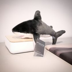Sedona Sage Shark 12inch - 세도나세이지 샤크 12인치