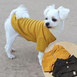 헨리넥 니트 티셔츠  와플무늬 원단 귀여운 투버튼  가을니트