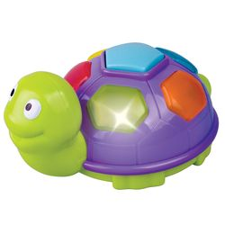 노래하는 작은 거북이(612R23468-1)