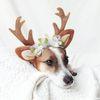 꽃사슴 루돌프 머리띠 크리스마스 고양이 강아지 모자 코스튬